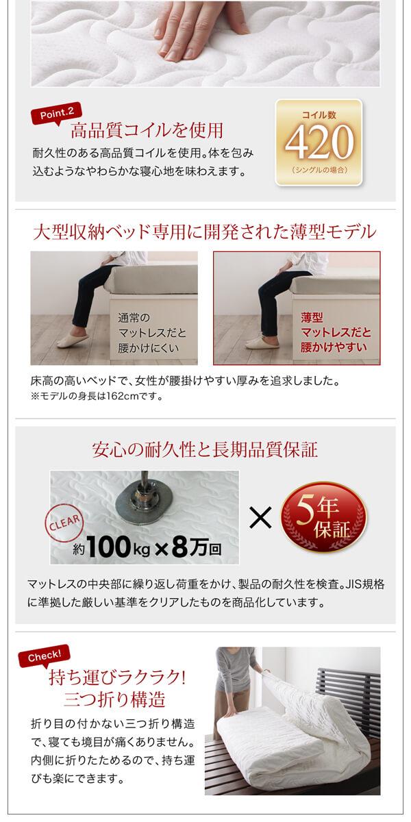 収納ベッド シングル通販ショップ 『棚・コンセント付きチェストベッド【Lagest】ラジェスト』