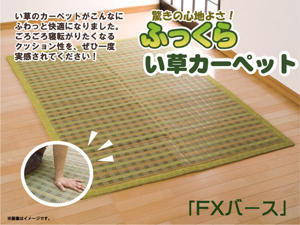 ひんやりラグマット通販 外国産ラグ ウレタンあり『い草花ござカーペット 「FXバース裏張CP」』