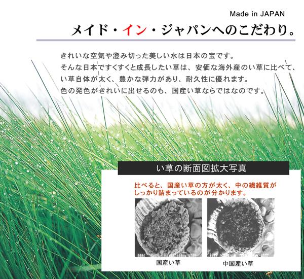 ひんやりラグマット通販『純国産 無地カラーい草ラグカーペット 「Fプラード」』